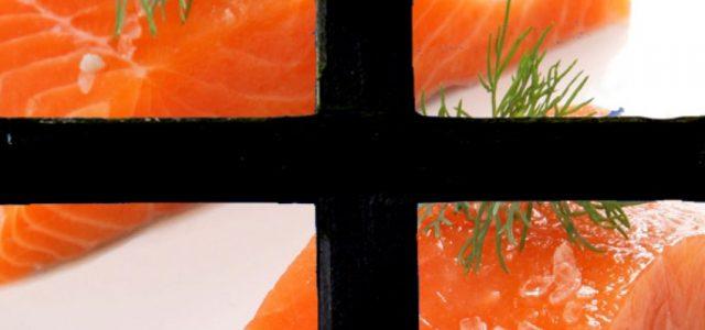 Otro buzo muere en la industria del salmón en el sur de Chile