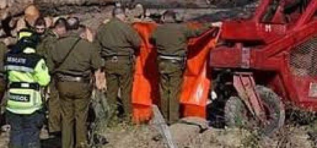 Trabajador forestal murió por golpe con un tronco en Curanilahue
