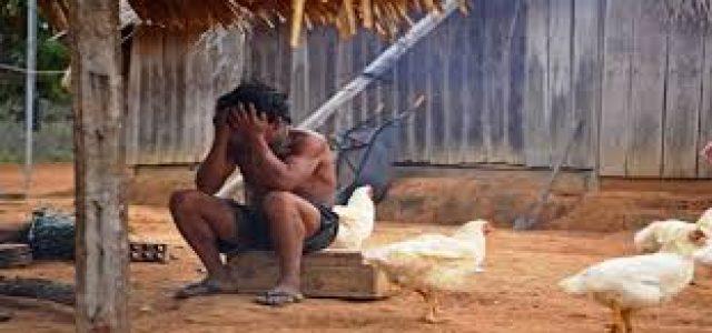 Brasil – En 2018 fueron asesinados 135 indígenas