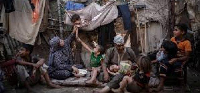 Palestina   2020: el año del hundimiento de Gaza