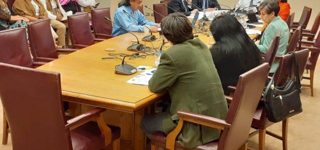 Aucan Huilcaman expone ante el Senado: Llama  que no se establezcan Escaños Reservados y que se acepte el Proceso Constituyente Mapuche.