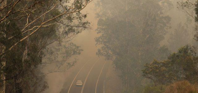 El humo de los incendios forestales en una carretera cerca de Moruya, Australia, el 4 de enero de 2020