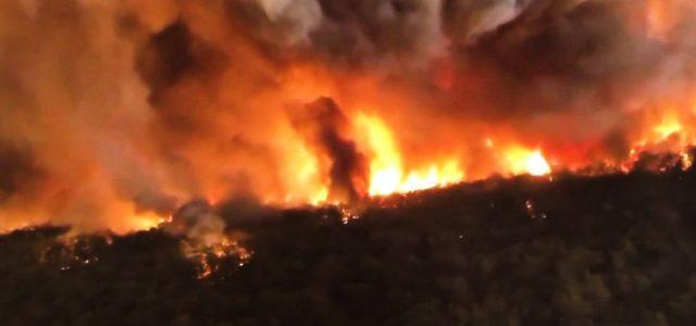 Los incendios forestales se propagan en Australia; India sufrió la década más calurosa registrada