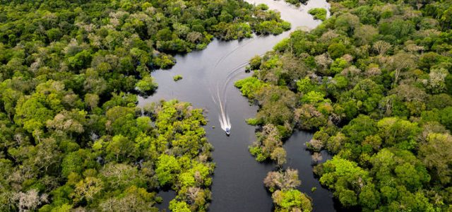 Experimentos con armas biológicas en el Amazonas
