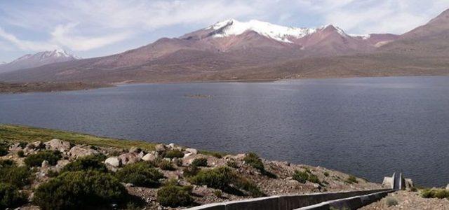 Tacna tiene reserva de agua para siete meses, según autoridades