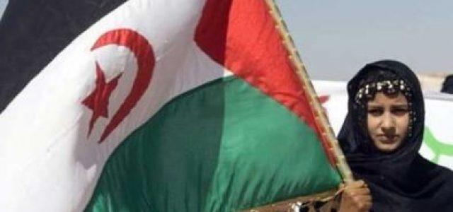 Sahara Occidental: 47 años de lucha del pueblo saharaui por su independencia