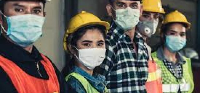 La precariedad laboral en las y los técnicos y profesionales en contexto de crisis capitalista y pandemia
